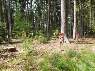 belegstellesachsenwald2